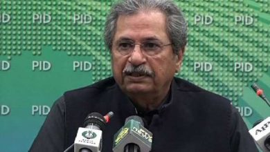 Primary classes will reopen nationwide from February 1, Shafqat Mehmood